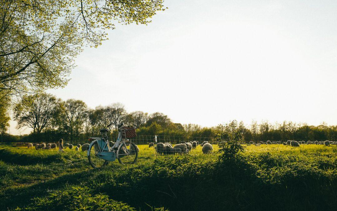 village around Eindhoven Geldrop